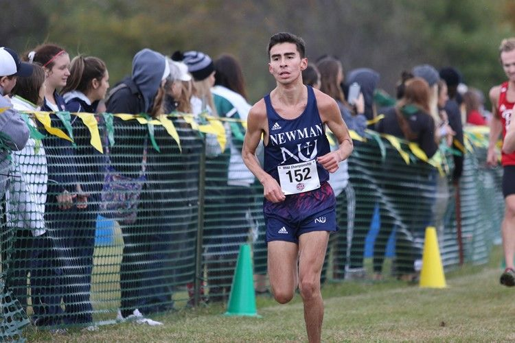 Cross country nears the finish line of its season